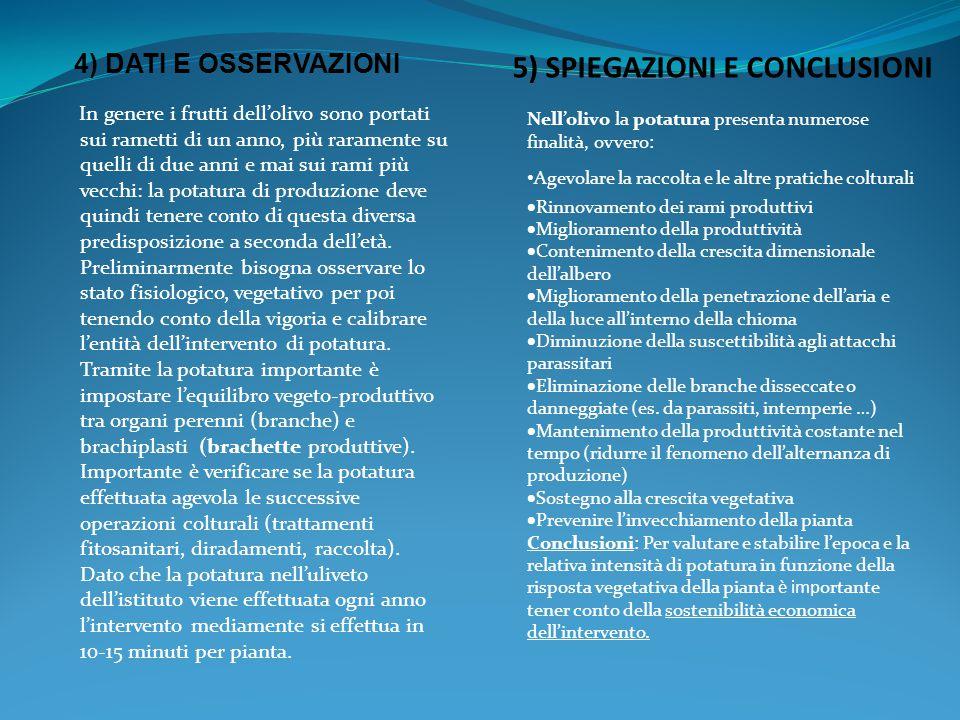 5) SPIEGAZIONI E CONCLUSIONI