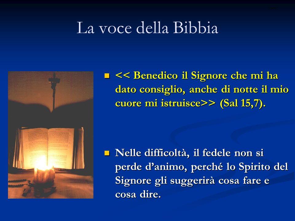 ritardoLa voce della Bibbia. << Benedico il Signore che mi ha dato consiglio, anche di notte il mio cuore mi istruisce>> (Sal 15,7).