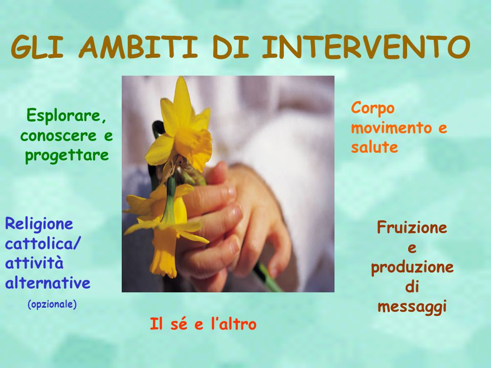 GLI AMBITI DI INTERVENTO
