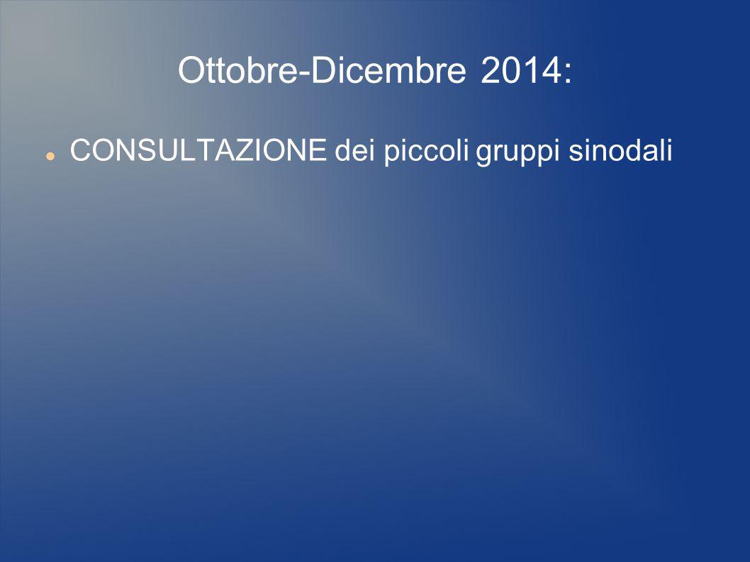 Ottobre-Dicembre 2014: CONSULTAZIONE dei piccoli gruppi sinodali