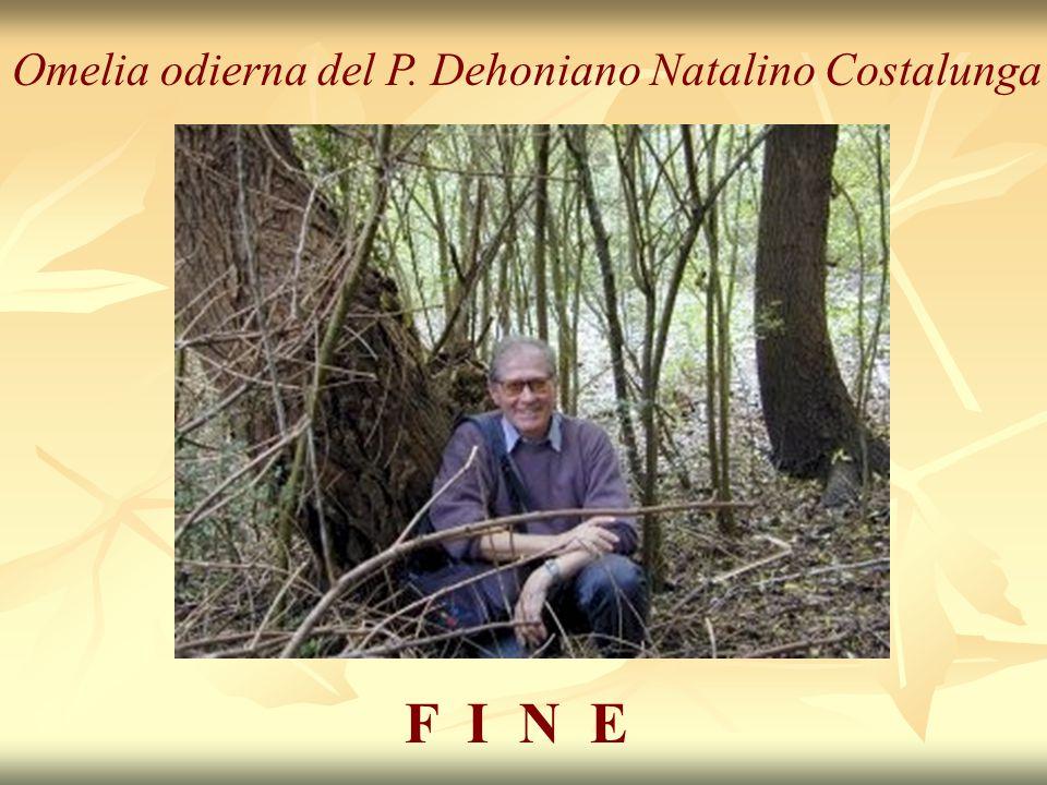 Omelia odierna del P. Dehoniano Natalino Costalunga