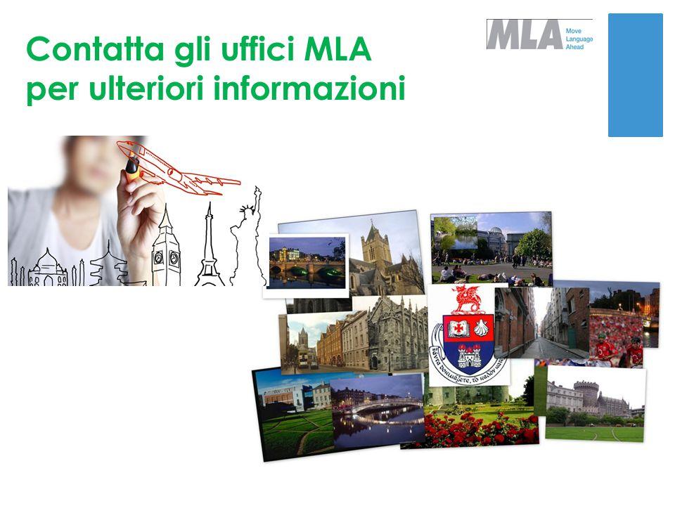 Contatta gli uffici MLA per ulteriori informazioni