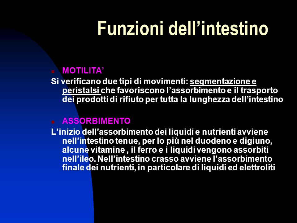 Funzioni dell'intestino