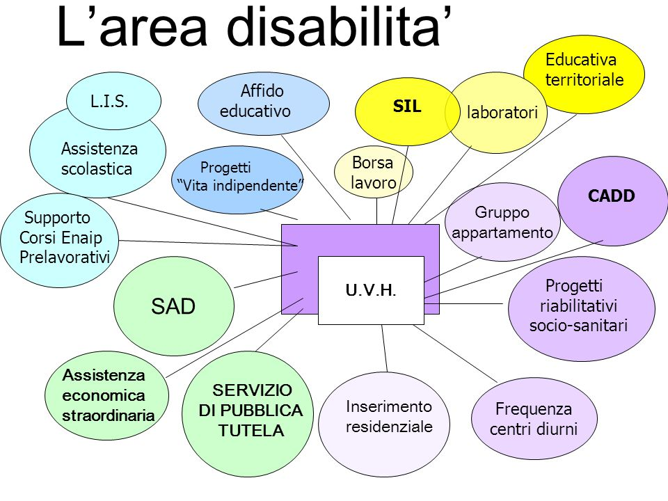 L'area disabilita' SAD Educativa territoriale SIL Affido educativo