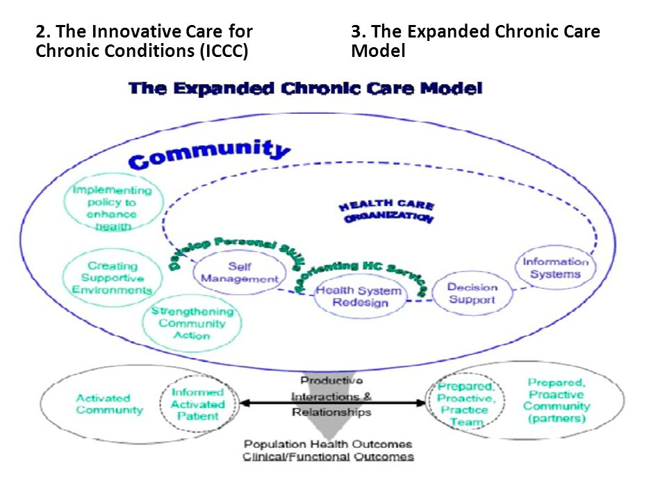 2. The Innovative Care for Chronic Conditions (ICCC)
