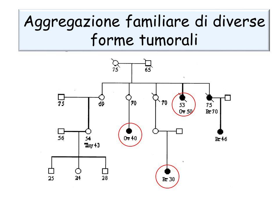 Aggregazione familiare di diverse forme tumorali