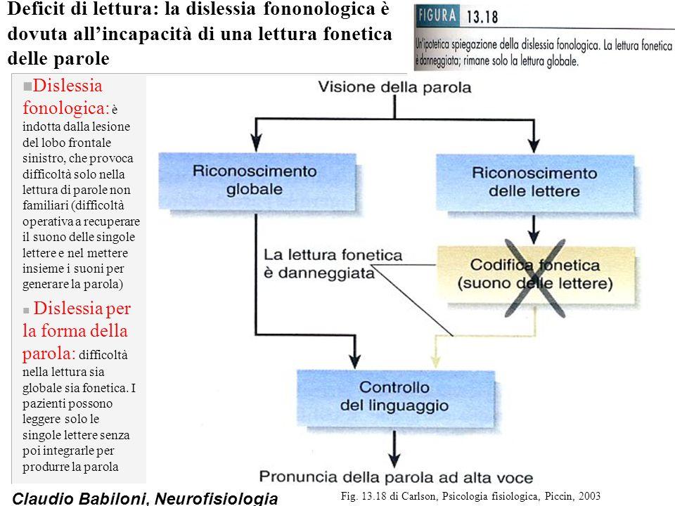 Fig. 13.18 di Carlson, Psicologia fisiologica, Piccin, 2003