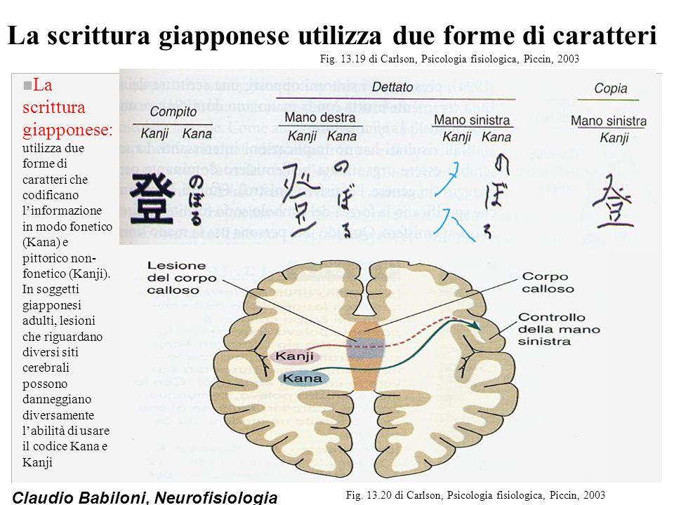 La scrittura giapponese utilizza due forme di caratteri