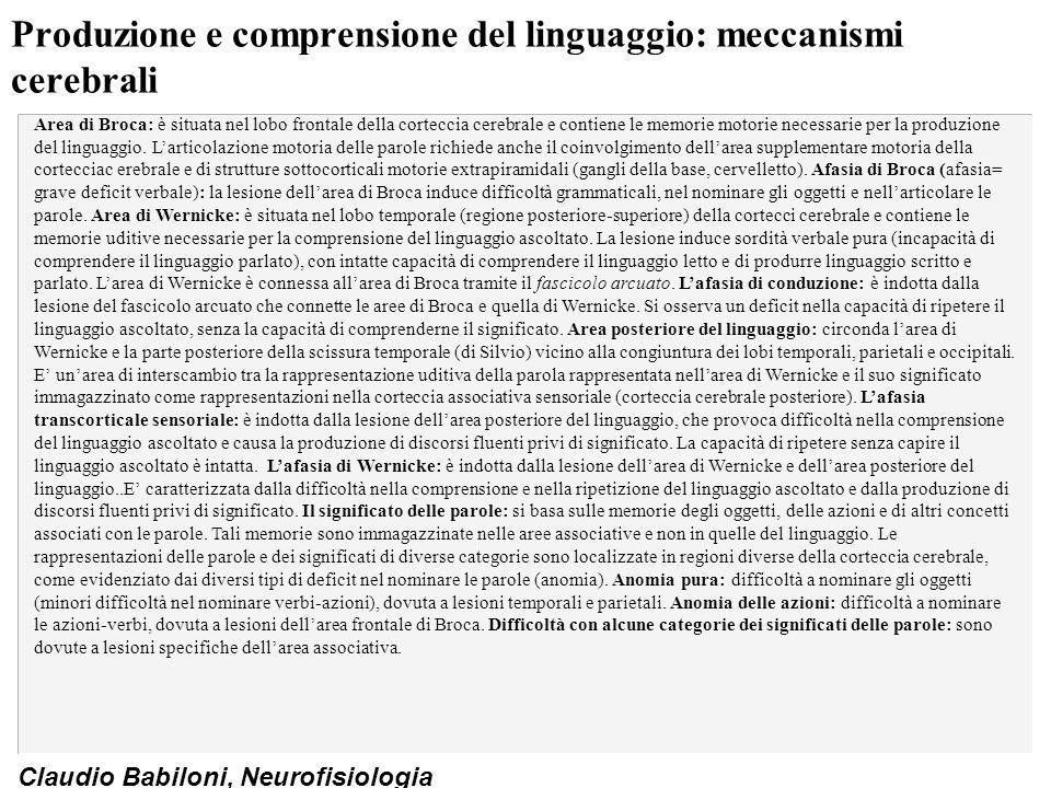 Produzione e comprensione del linguaggio: meccanismi cerebrali