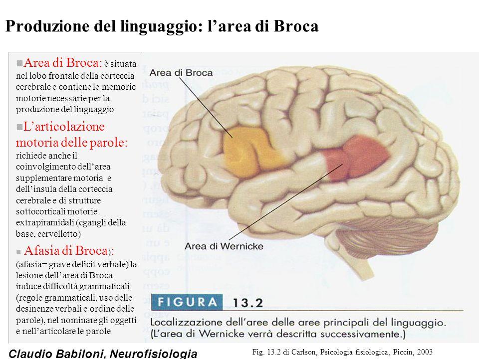 Produzione del linguaggio: l'area di Broca