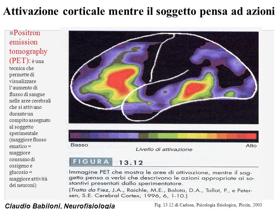 Attivazione corticale mentre il soggetto pensa ad azioni