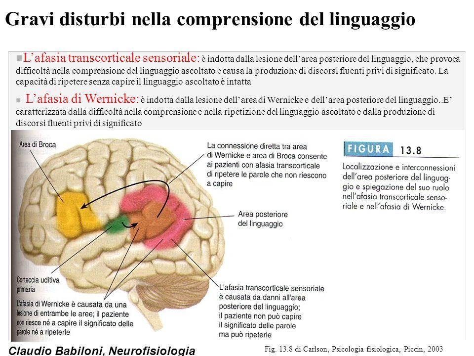 Gravi disturbi nella comprensione del linguaggio