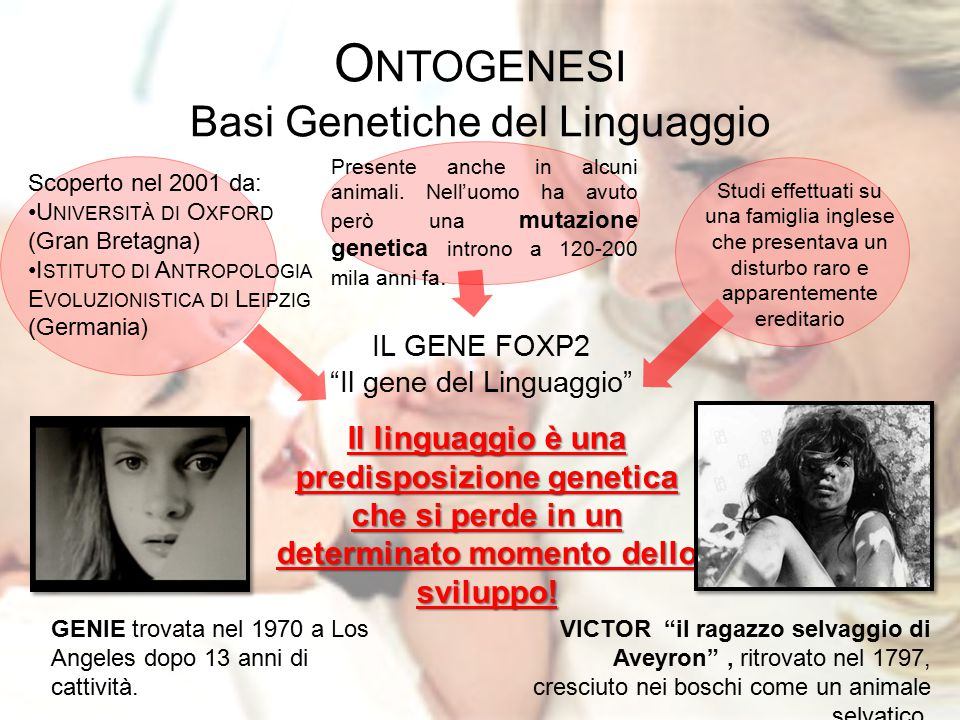 Ontogenesi Basi Genetiche del Linguaggio