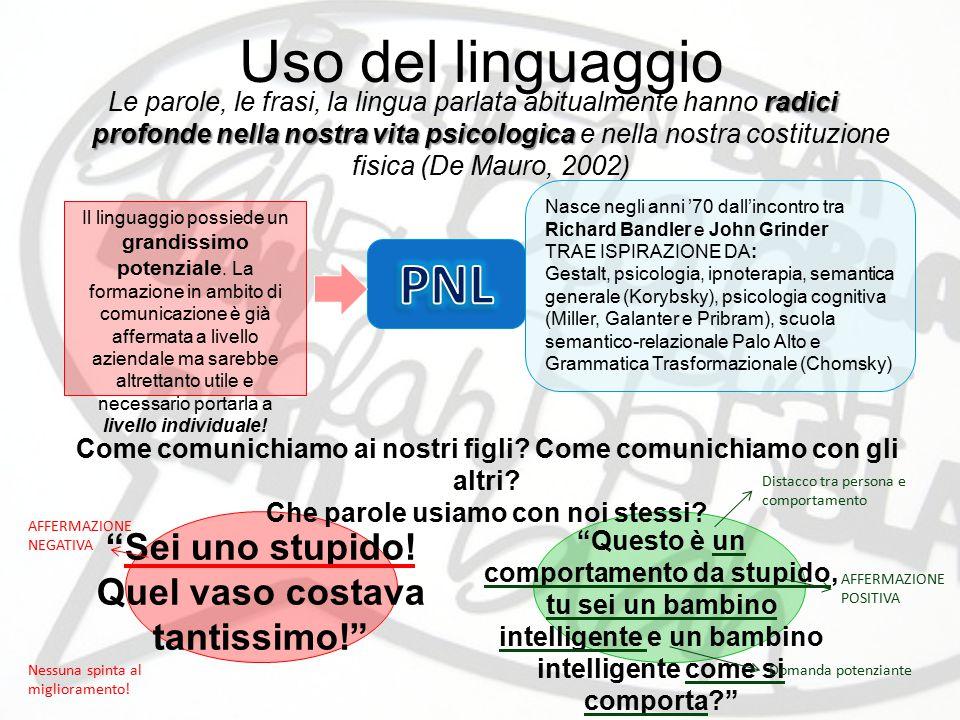Uso del linguaggio PNL Sei uno stupido!