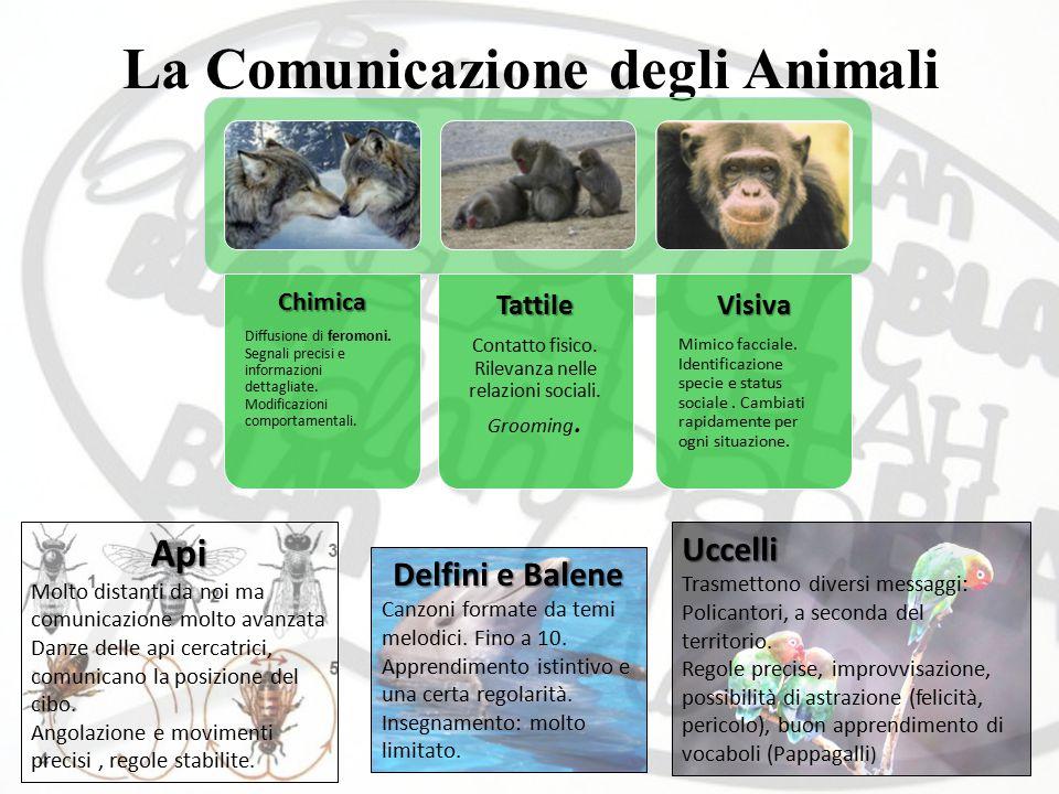 La Comunicazione degli Animali