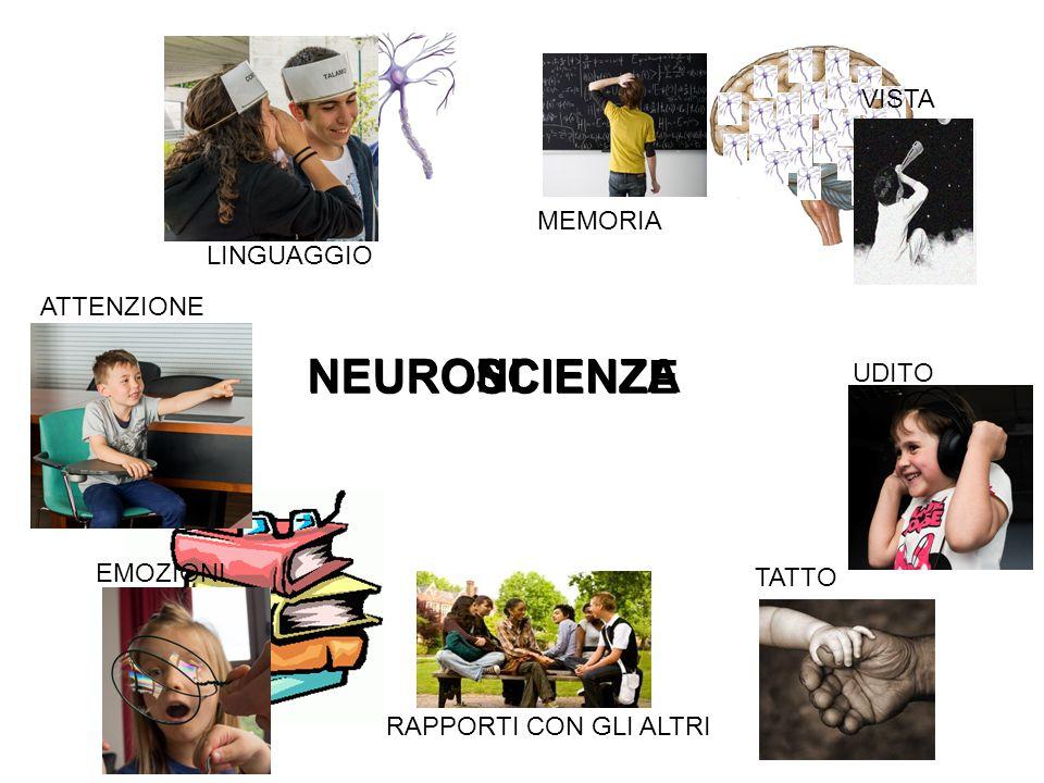 NEURONI NEUROSCIENZE SCIENZA VISTA MEMORIA LINGUAGGIO ATTENZIONE UDITO