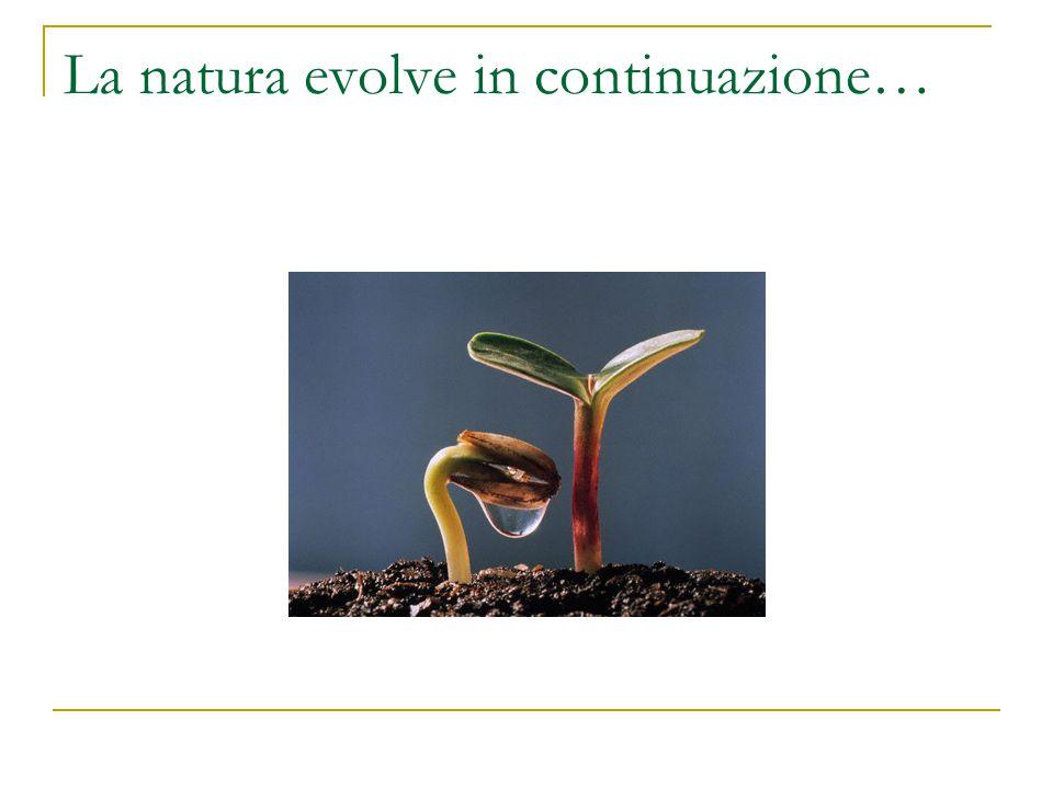La natura evolve in continuazione…