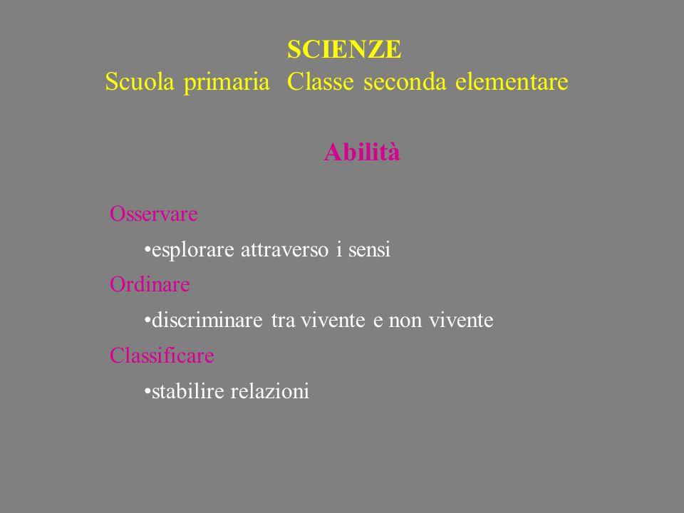Scuola primaria Classe seconda elementare