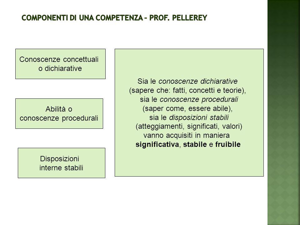 Componenti di una competenza – Prof. Pellerey