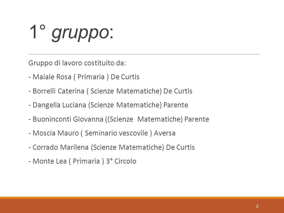 1° gruppo: Gruppo di lavoro costituito da:
