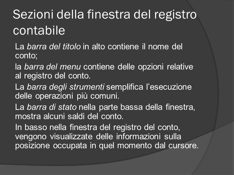 Sezioni della finestra del registro contabile