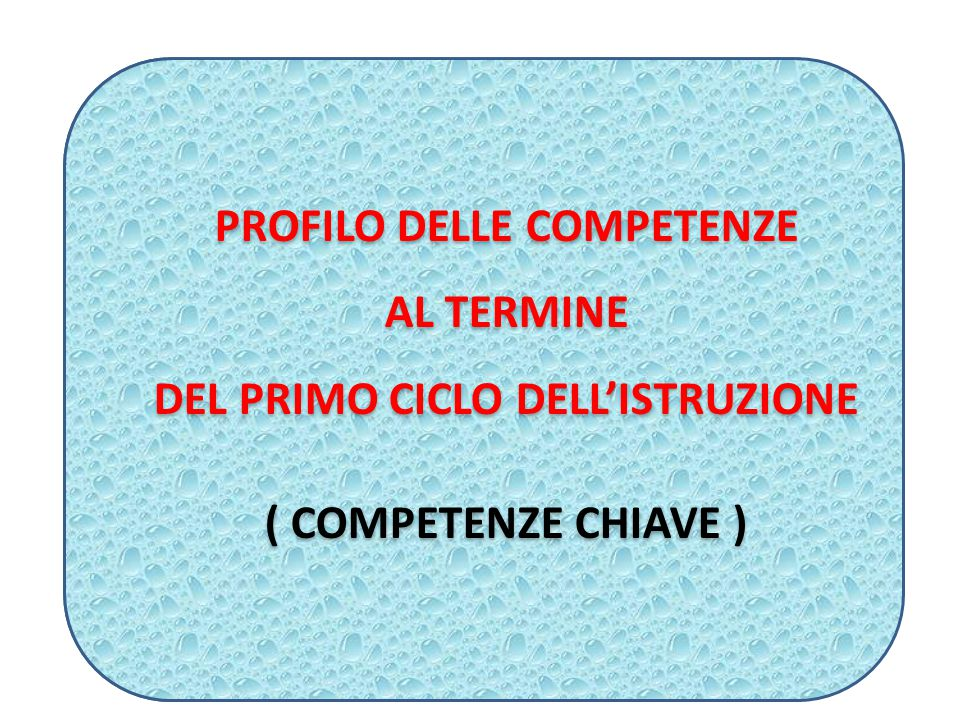 PROFILO DELLE COMPETENZE DEL PRIMO CICLO DELL'ISTRUZIONE