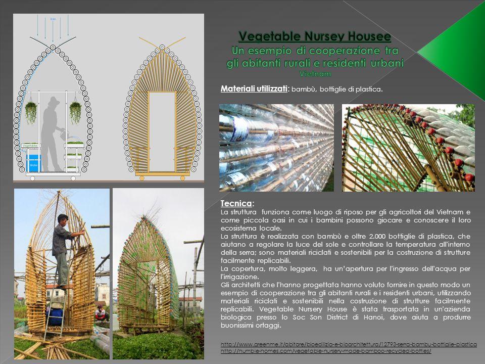 Vegetable Nursey Housee Un esempio di cooperazione tra gli abitanti rurali e residenti urbani Vietnam