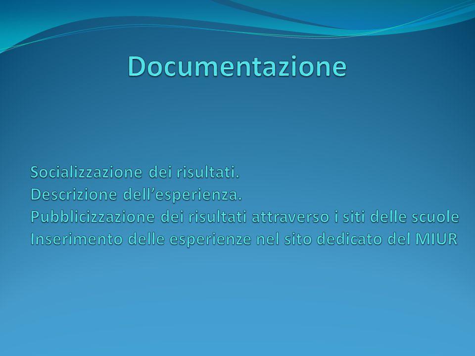Documentazione Socializzazione dei risultati