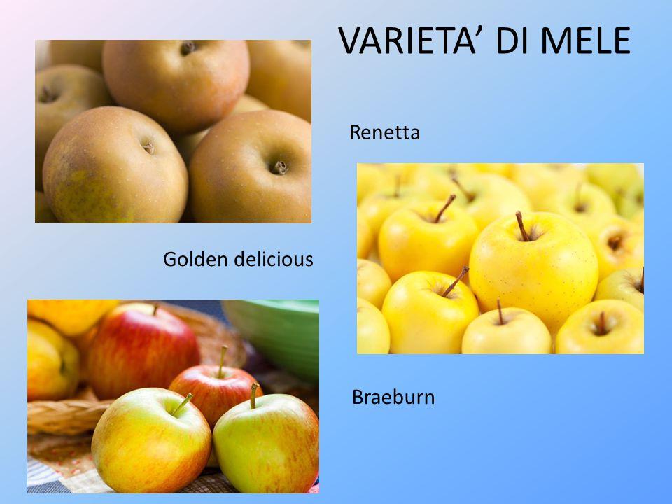 VARIETA' DI MELE Renetta Golden delicious Braeburn