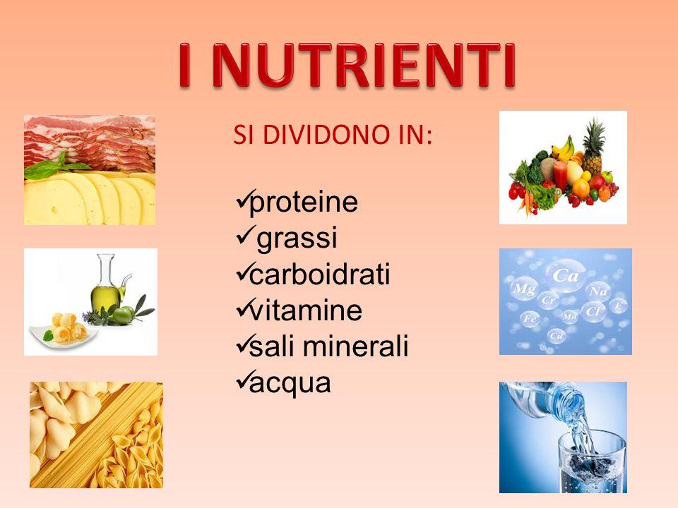 I NUTRIENTI SI DIVIDONO IN: proteine grassi carboidrati vitamine