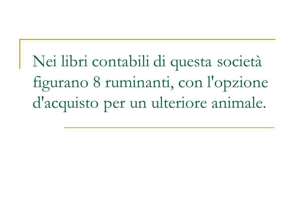 Nei libri contabili di questa società figurano 8 ruminanti, con l opzione d acquisto per un ulteriore animale.