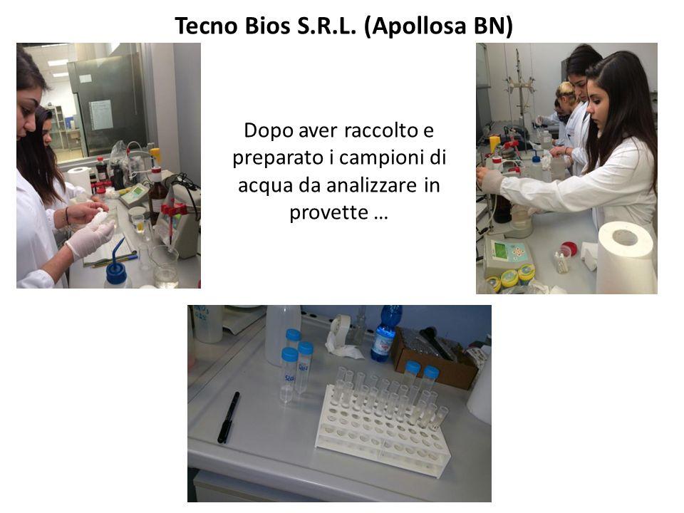 Tecno Bios S.R.L. (Apollosa BN)