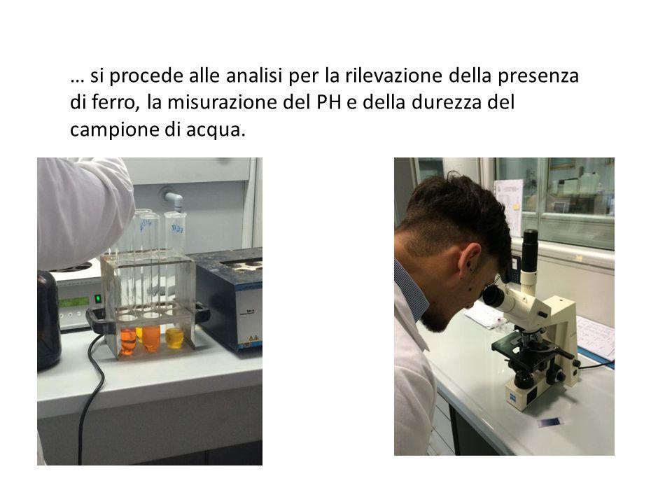 … si procede alle analisi per la rilevazione della presenza di ferro, la misurazione del PH e della durezza del campione di acqua.