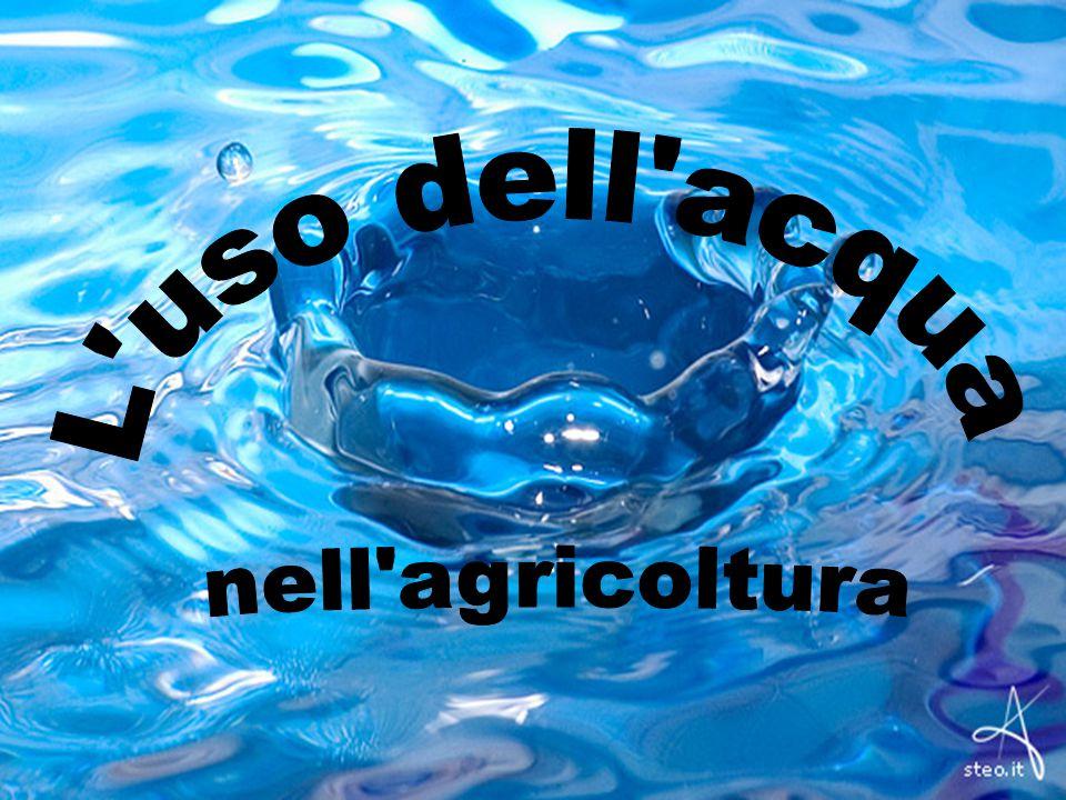 L uso dell acqua nell agricoltura