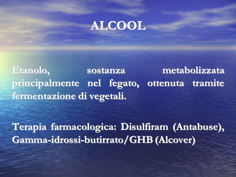 ALCOOL Etanolo, sostanza metabolizzata principalmente nel fegato, ottenuta tramite fermentazione di vegetali.