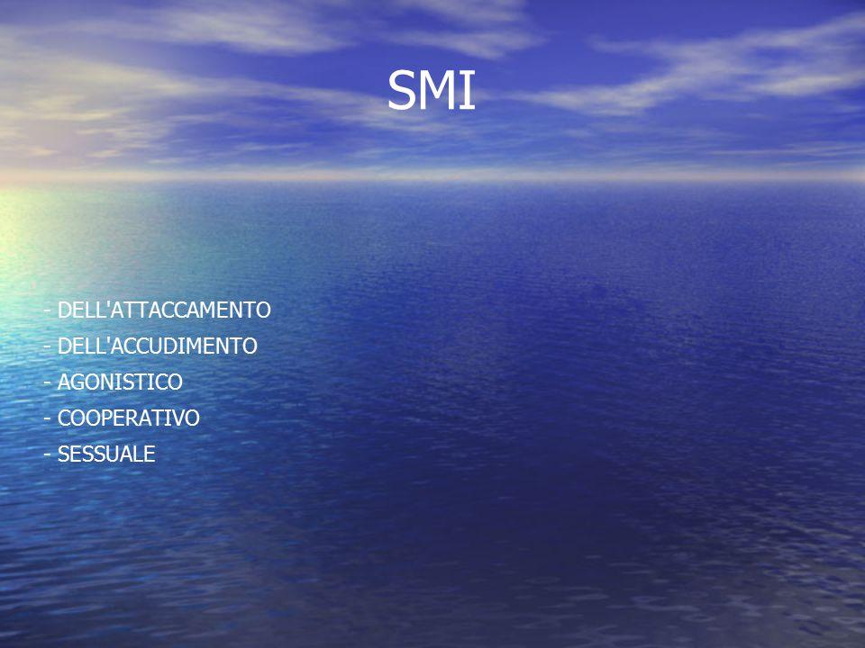 SMI - DELL ATTACCAMENTO - DELL ACCUDIMENTO - AGONISTICO - COOPERATIVO