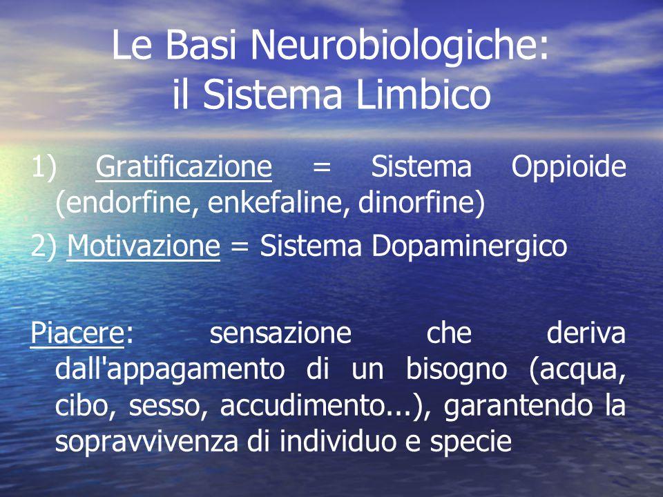 Le Basi Neurobiologiche: il Sistema Limbico