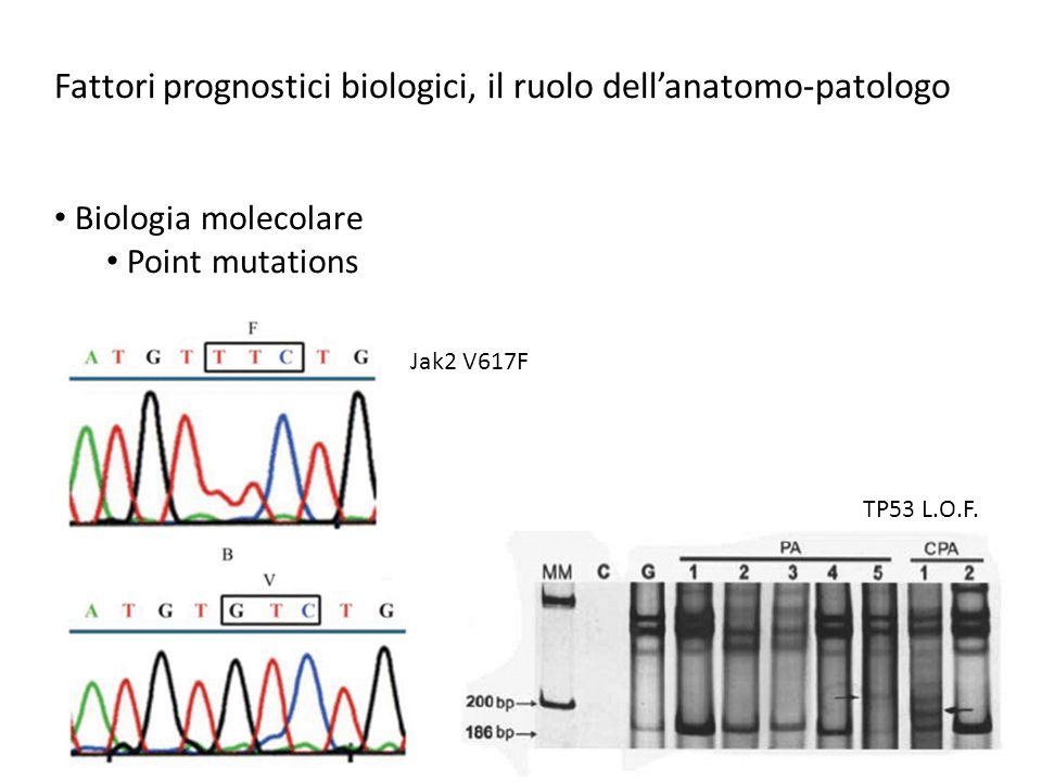 Fattori prognostici biologici, il ruolo dell'anatomo-patologo