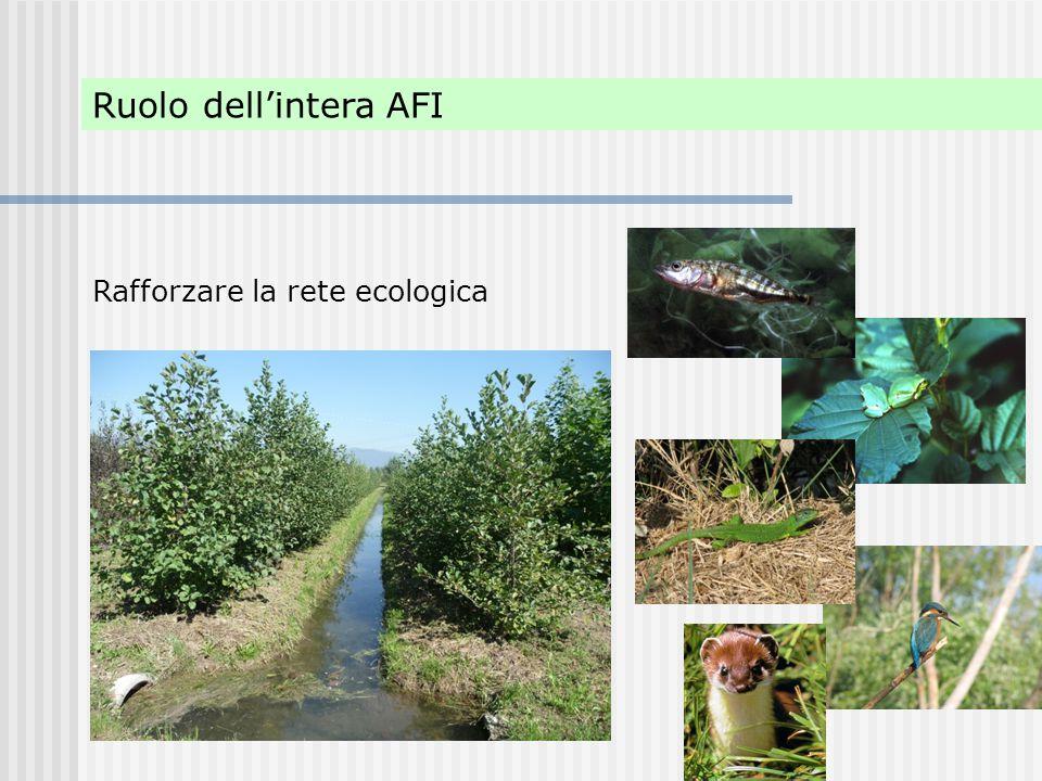 Ruolo dell'intera AFI Rafforzare la rete ecologica