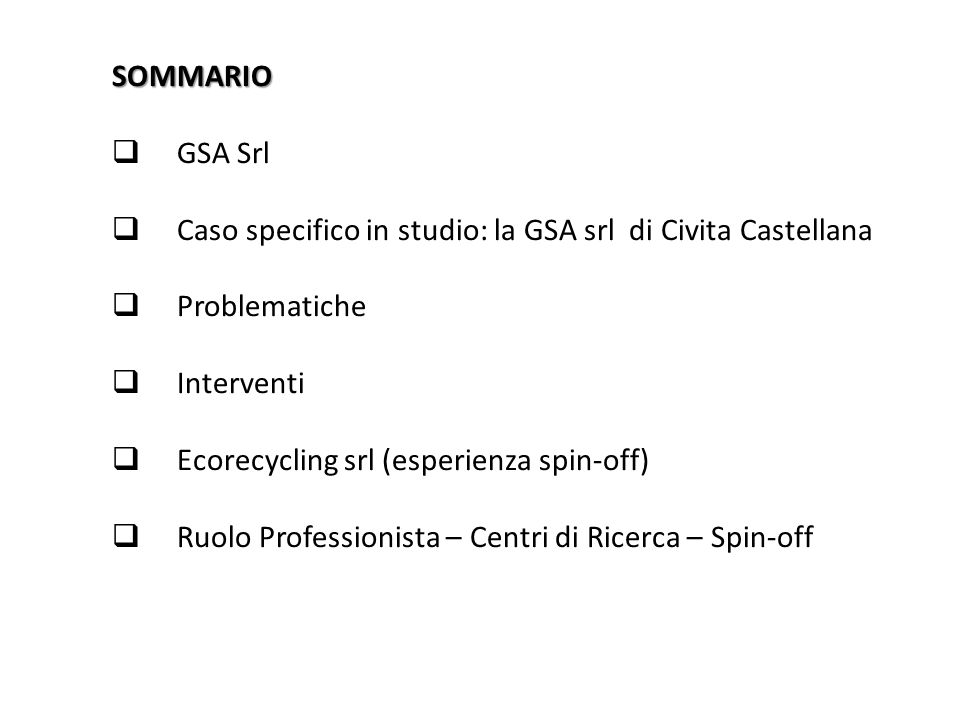 SOMMARIO GSA Srl. Caso specifico in studio: la GSA srl di Civita Castellana. Problematiche. Interventi.