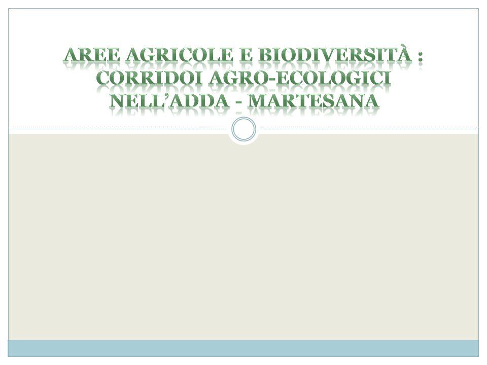 Aree agricole e biodiversità : corridoi agro-ecologici nell'adda - martesana