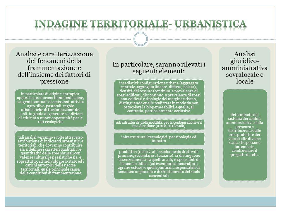 Indagine territoriale- urbanistica