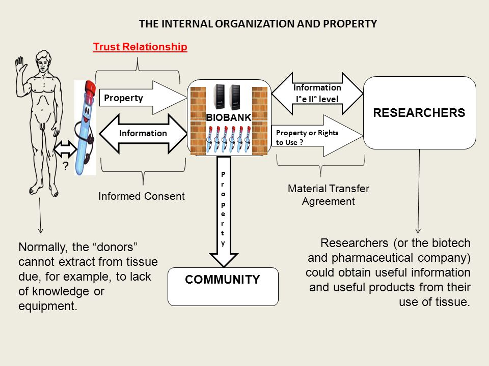 THE INTERNAL ORGANIZATION AND PROPERTY