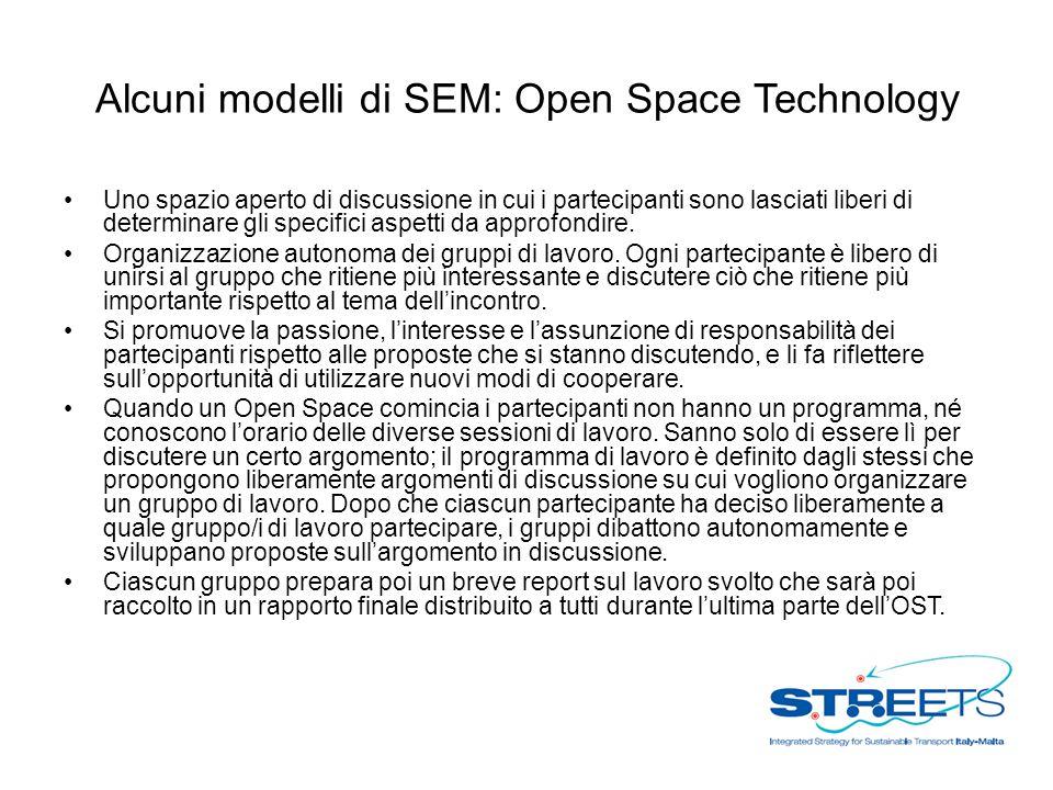 Alcuni modelli di SEM: Open Space Technology