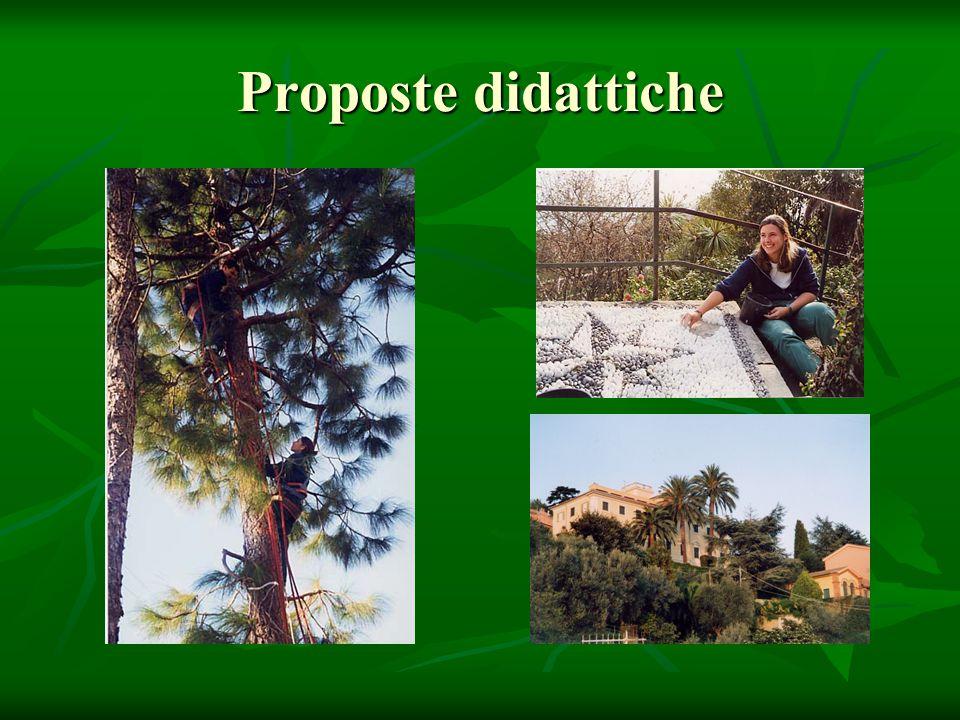 Proposte didattiche