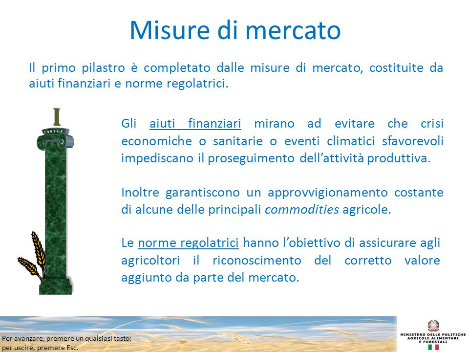 Misure di mercato Il primo pilastro è completato dalle misure di mercato, costituite da aiuti finanziari e norme regolatrici.