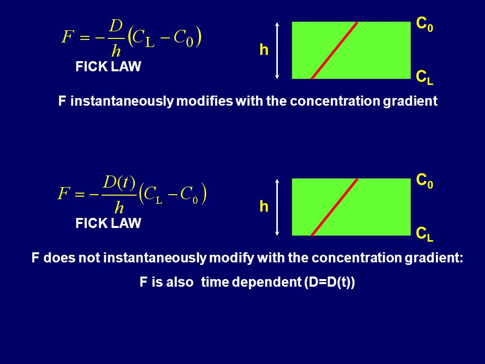 F instantaneously modifies with the concentration gradient