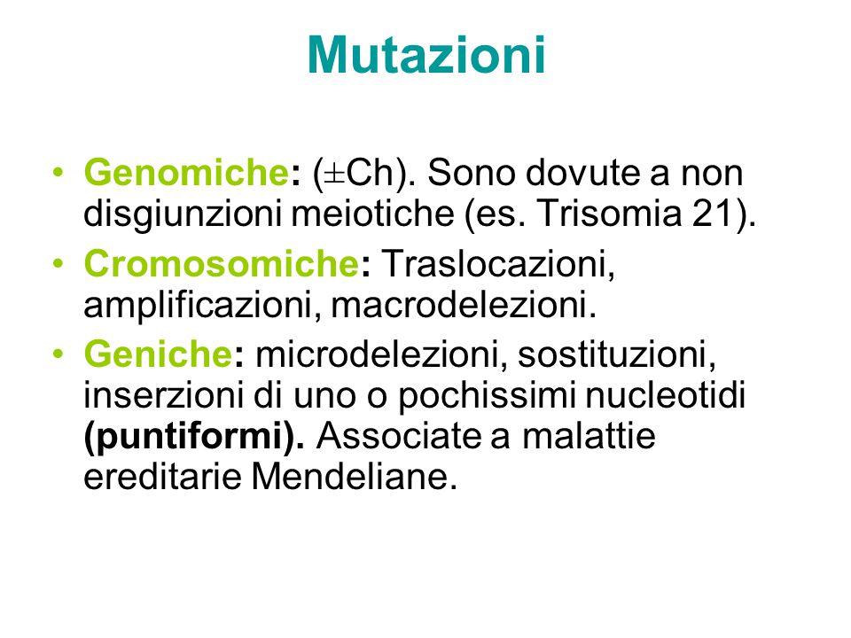 Mutazioni Genomiche: (±Ch). Sono dovute a non disgiunzioni meiotiche (es. Trisomia 21). Cromosomiche: Traslocazioni, amplificazioni, macrodelezioni.