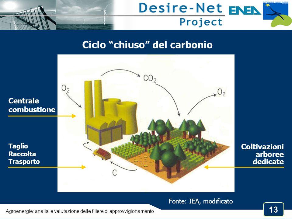 Ciclo chiuso del carbonio