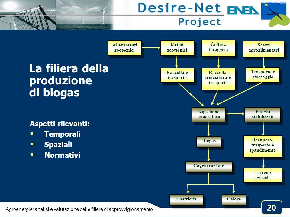 La filiera della produzione di biogas Aspetti rilevanti: Temporali